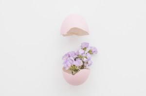 piękne-kwiaty-w-skorupce_23-2147766592