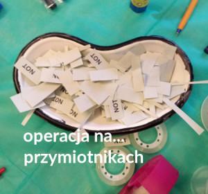 <span>Operacja na&#8230; przymiotnikach</span><i>→</i>