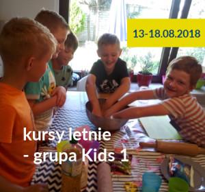 <span>Kursy letnie 2018 – grupa KIDS 1</span><i>→</i>